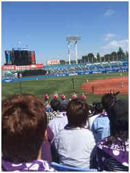 六大学野球の模様 攻撃時はとても盛り上がります!